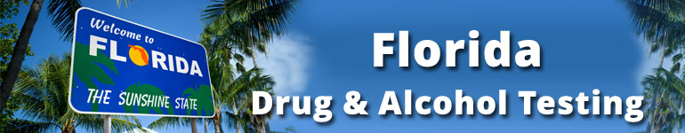 Florida Drug And Alcohol Testing  Accredited Drug Testing. Master Degree Programs In San Diego. Louisiana Child Support Chase Business Number. Windows Server Cloud Hosting. Mold Remediation Las Vegas Lasik Post Op Care. Architect Schools In California. Sedation Dentistry Las Vegas. Immigration Bond Payment Eubanks Funeral Home. Masters Of Forensic Accounting
