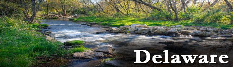 DOT Drug Testing Delaware