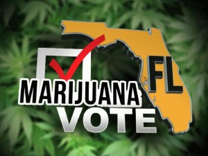 Florida Voters Legalize Medical Marijuana