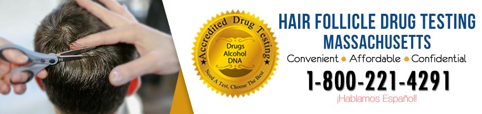 Hair Follicle Drug Testing Massachusetts