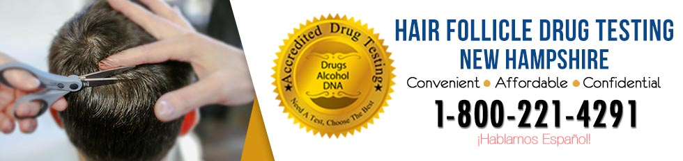 Hair Follicle Drug Testing New Hampshire