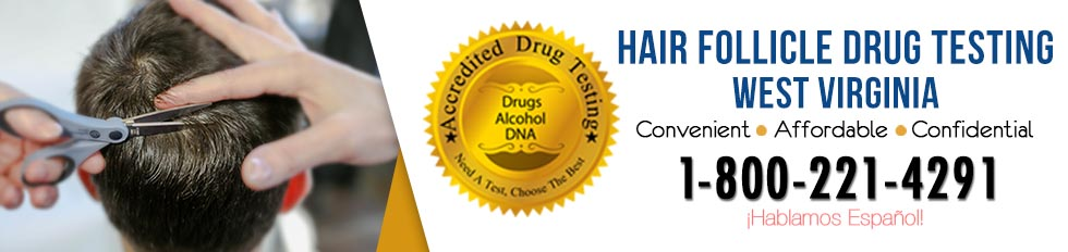 Hair Follicle Drug Testing West Virginia